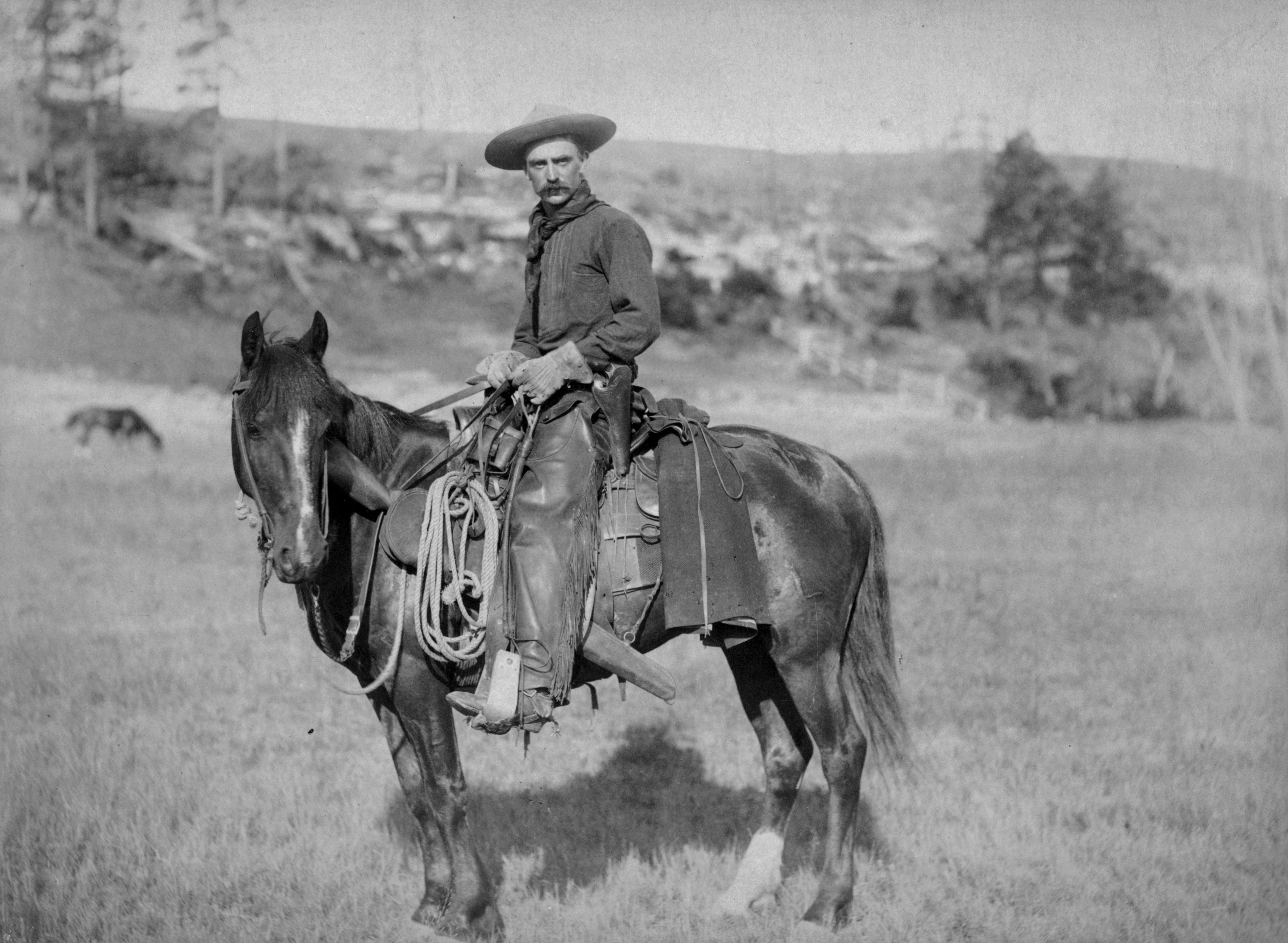 American cowboy 1887